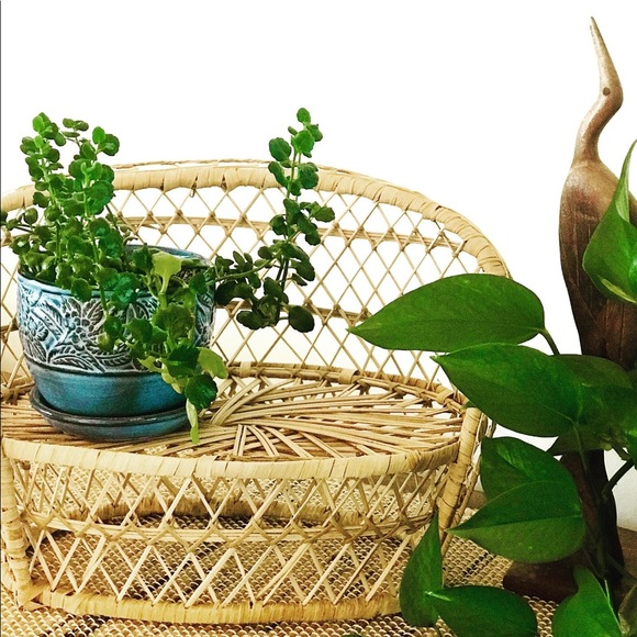 Wicker planter or doll furniture